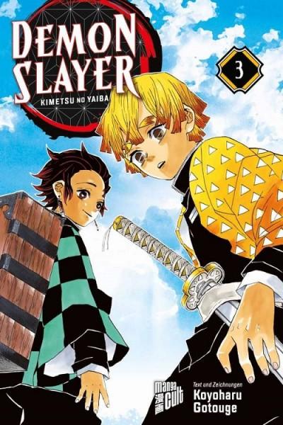 Demon Slayer: Kimetsu No Yaiba 3 Cover