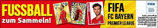 media/image/paninishop-fussball2019-banner-550x100-fuershop.jpg