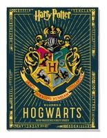 Harry Potter: Willkommen in Hogwarts - Dein magisches Kreativbuch