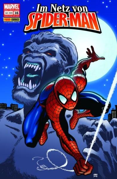 Im Netz von Spider-Man 16