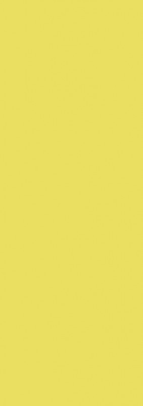 Panini Premier League Adrenalyn XL 2020/21 - Tin - Balken Gelb