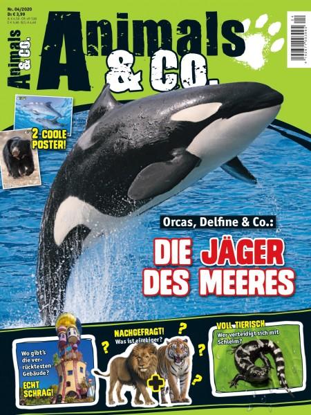 Animals & Co. Magazin 04/20 Cover