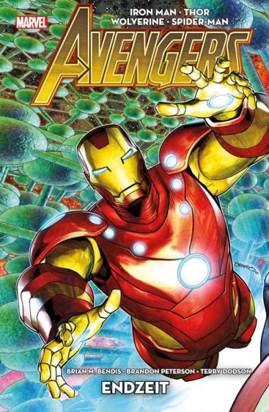 Avengers 6: Endzeit