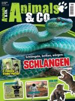Animals & Co. Magazin 05/20 Cover