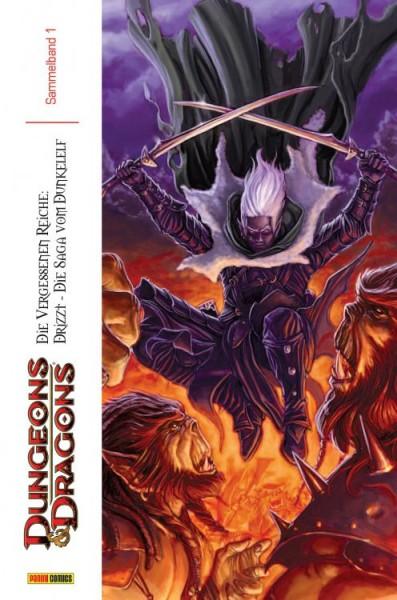 Dungeons & Dragons - Die Saga vom Dunkelelf Megaband 1
