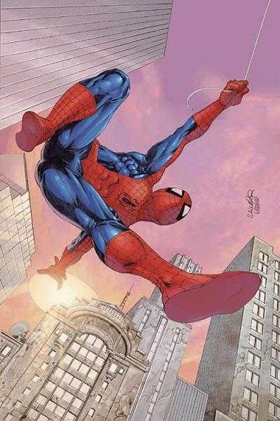 Der spektakuläre Spider-Man 19