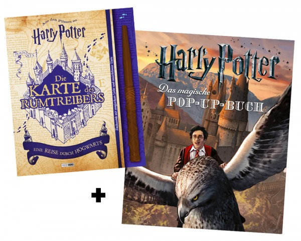 Harry Potter Film-Bundle