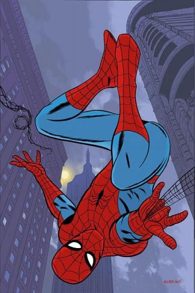 Der spektakuläre Spider-Man 17