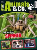 Animals und Co Ausgabe 1 2020 - Alles rund um krabbelige Spinnen